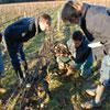 Syndicat des vins de Montlouis